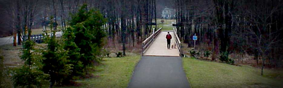 Person walking dog over pedestrian bridge